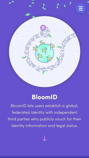 Bloom 20