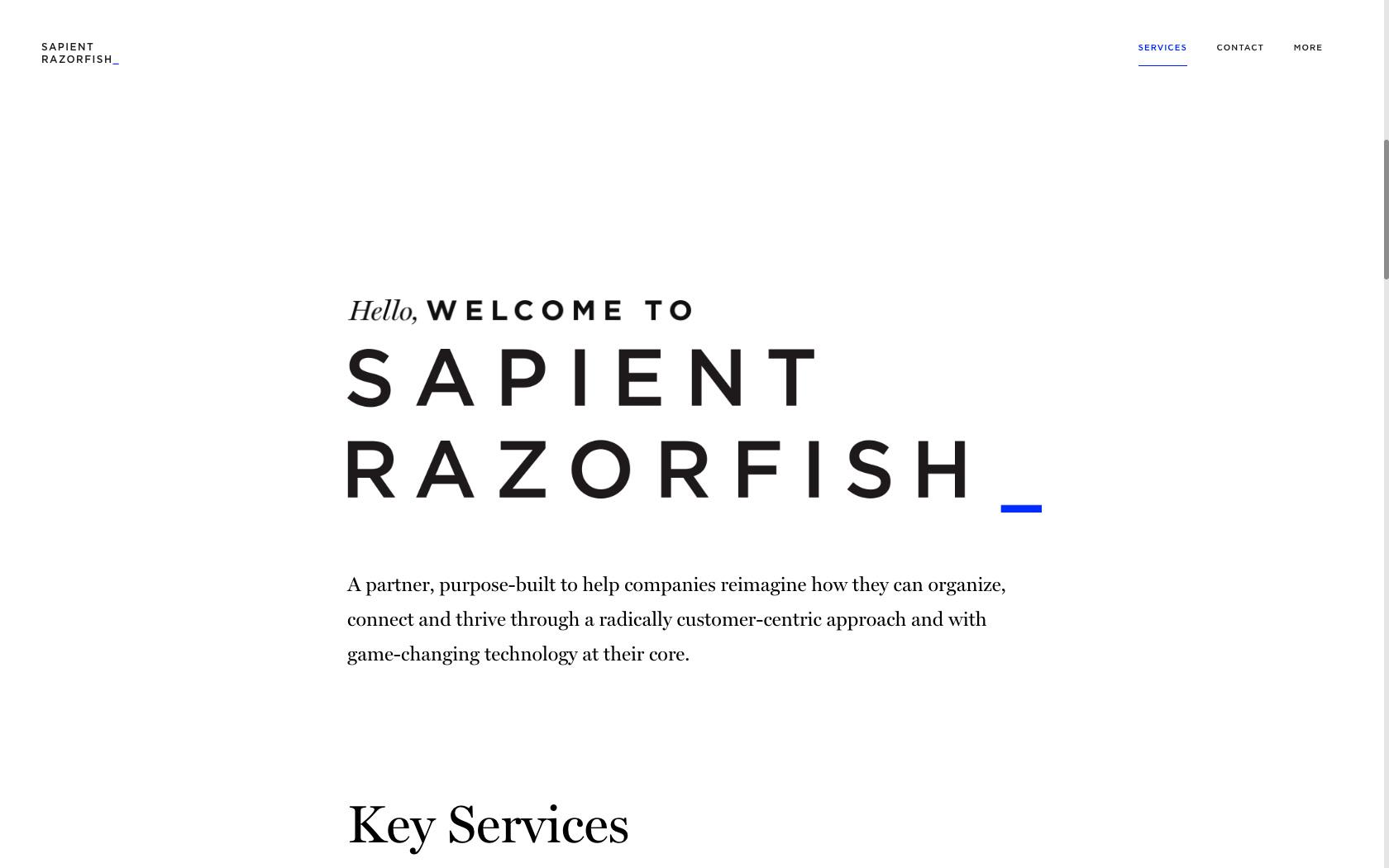 Sapientrazorfish 02